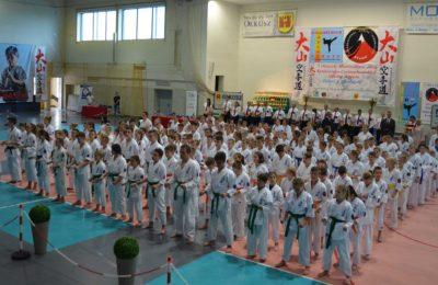 Więcej o: X Otwarte Mistrzostwa Jury Krakowsko-Częstochowskiej Oyama Karate Dzieci i Młodzieży