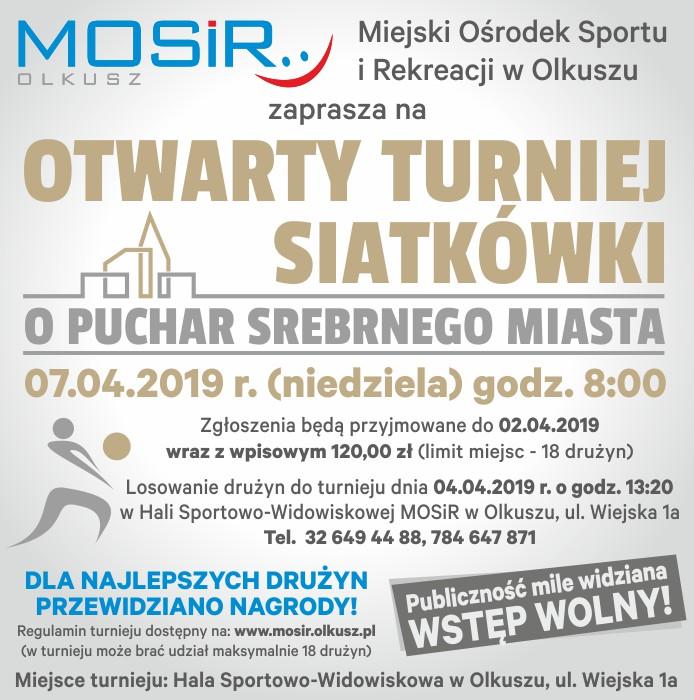 Otwarty Turniej Siatkówki o Puchar Srebrnego Miasta