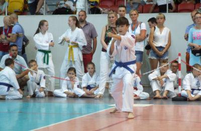 Więcej o: XI Otwarte Mistrzostwa Jury Krakowsko-Częstochowskiej Oyama Karate Dzieci i Młodzieży