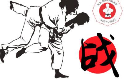 Więcej o: Wakacyjna Akademia Ju – Jitsu i Judo