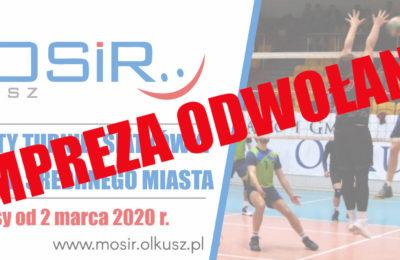 Więcej o: Otwarty Turniej Siatkówki o Puchar Srebrnego Miasta