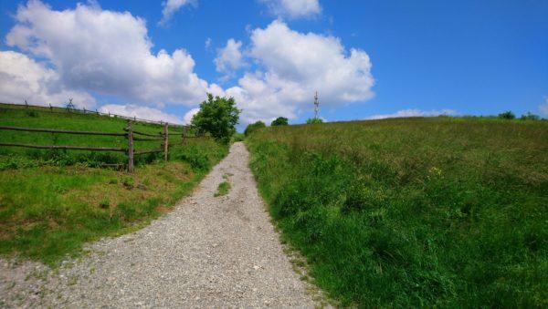 Droga szutrowa prowadząca na wzniesienie widokowe Olkusza