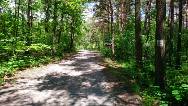Droga Olkusz - Krzeszowice
